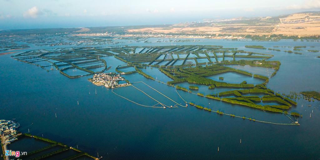 Nằm cách TP Quy Nhơn khoảng 15 km, Cồn Chim ở xã Phước Sơn, huyện Tuy Phước (Bình Định) trông hệt như cánh quạt khổng lồ giữa sông nước mênh mông. Khu sinh thái này nằm giữa đầm Thị Nại có rừng ngập mặn trải rộng hàng trăm ha, trở thành nơi trú ngụ lý tưởng của muôn loài chim