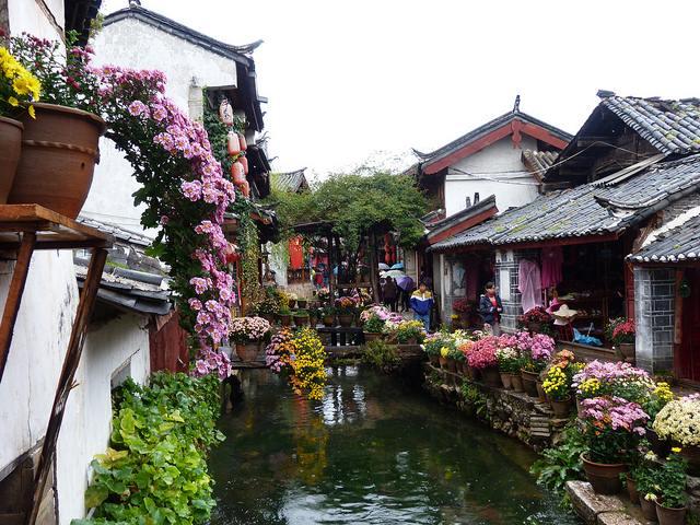 Khi đặt chân đến phố cổ Lệ Giang ở tỉnh Vân Nam, nhiều du khách cảm thấy như đang trở về quá khứ bởi không gian cổ kính, nên thơ của nơi đây.