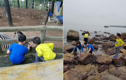 Lũ trẻ đều rất háo hức khám phá mọi thứ xung quanh nơi mình đến chơi. Ảnh: NVCC.