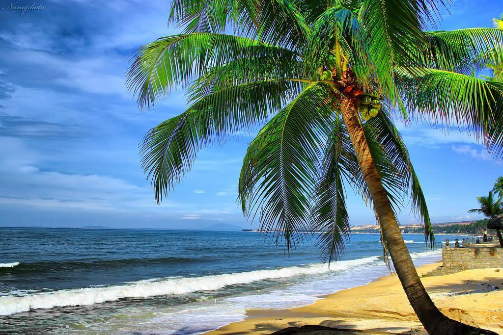 Bãi Rạng hay biển Rạng là bãi tắm đẹp nhất của TP. Phan Thiết