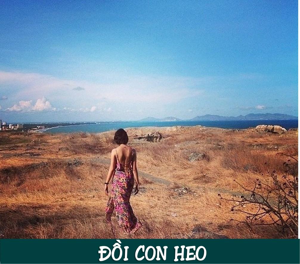Địa chỉ đồi Con Heo: Hẻm 222 Phan Chu Trinh, Phường 2, Tp. Vũng Tàu, Bà Rịa - Vũng Tàu