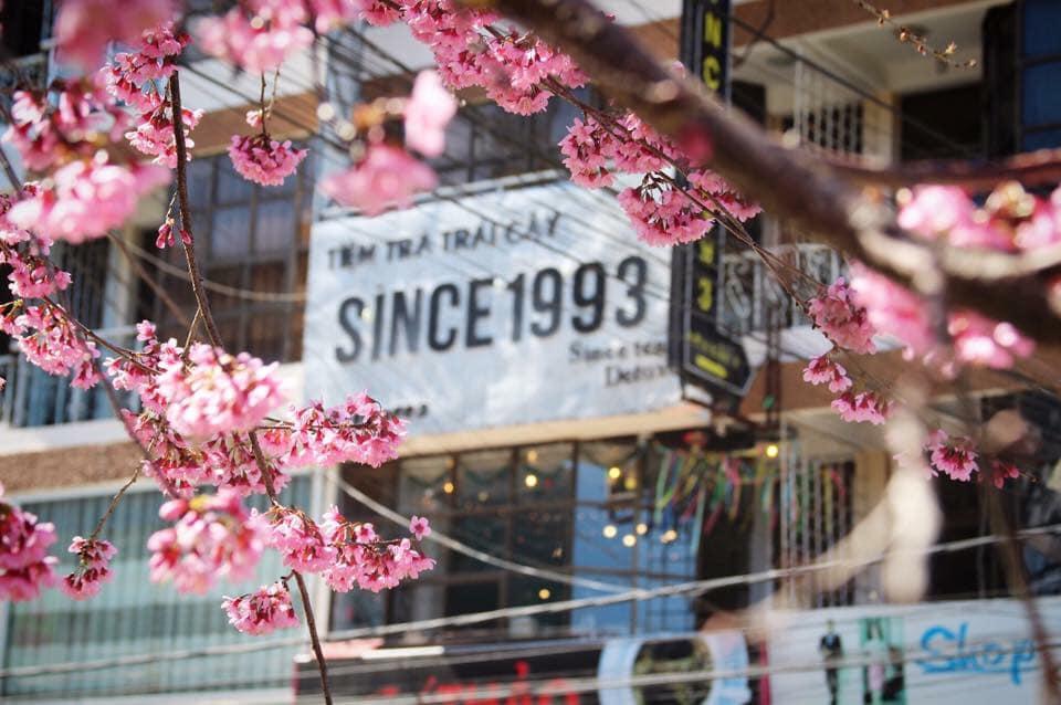 Cafe Since 1993 – 213, Bùi Thị Xuân