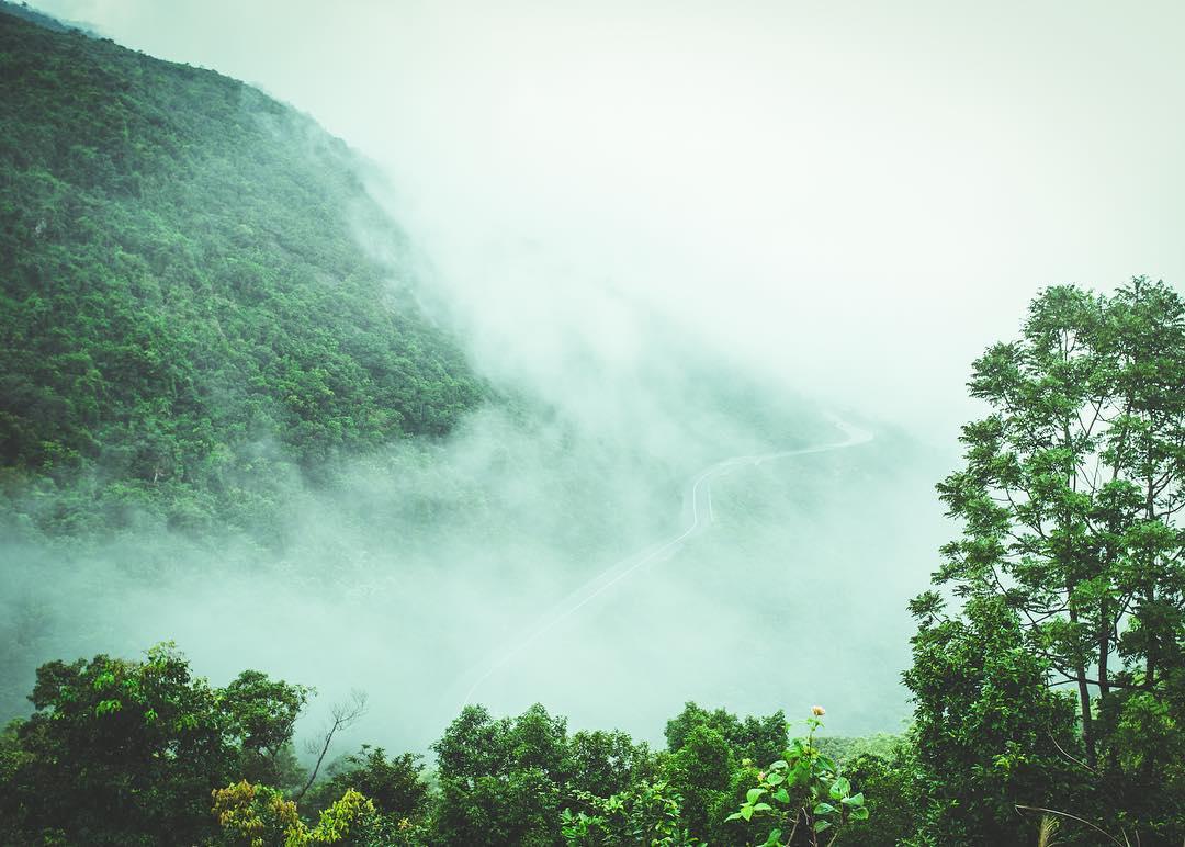 Mây mờ che phủ càng làm Hải Vân đèo như huyền bí hơn bao giờ