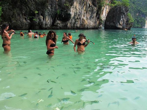 Tắm biển và ngắm các sinh vật biển đang bơi lội là những trải nghiệm đáng nhớ khi đến Krabi