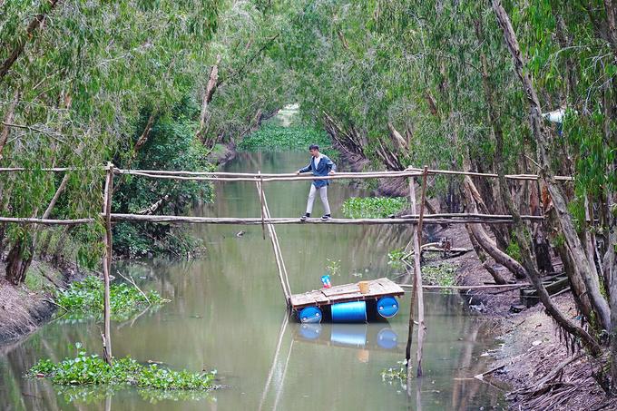 Khi cập bến trong rừng, khách có thể ghé nhà hàng thưởng thức các món đặc sản, trải nghiệm đi cầu khỉ hoặc leo lên tháp quan sát để ngắm cả khu rừng từ trên cao.Khách tham quan rừng tràm Trà Sư phải mua vé, dao động từ 100.000 đồng cho nhóm trên 5 người.