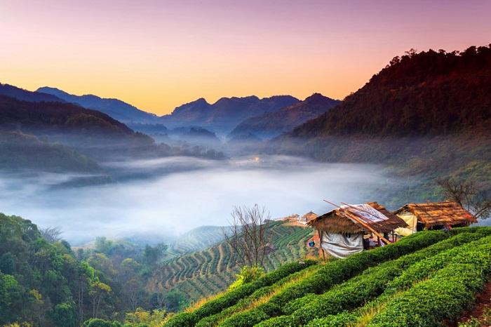 Không gian xanh mát bao phủ cả Chiang Mai