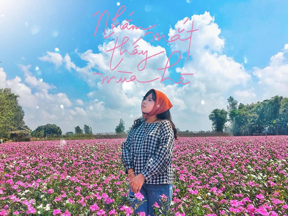 Qua phà Năng Gù đến Phú Tân, chạy thêm tầm 2km nữa sẽ gặp vườn. Trước vườn là quán bánh xèo, bánh khọt nhé.  Hoa trồng theo đợt ko phải lúc nào cũng có nhé.