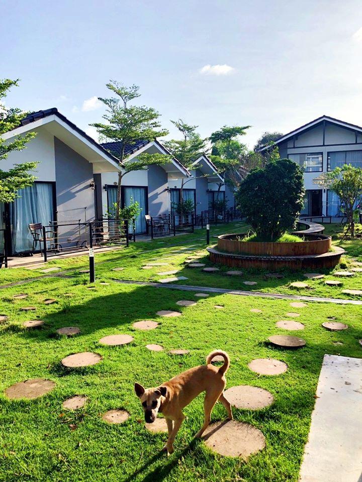 Mặt chính của Sandy Clay bungalow, Sihanoukville Mặt sau có hồ bơi khá lớn  Mọi thứ tại Sandy Clay đều ổn. Một vài năm nữa khi Sihanoukville hoàn tất xây dựng, Sandy có lẽ là lựa chọn tuyệt vời!