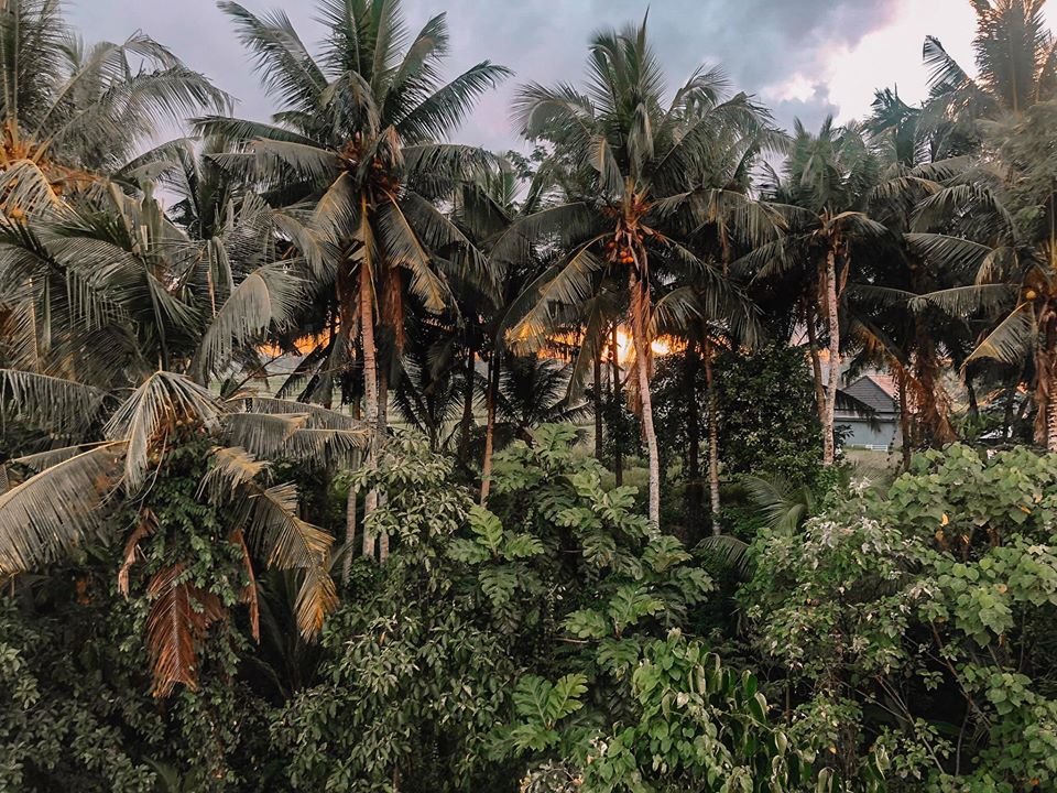 Bình mình từ view tại Akusara - UBUB