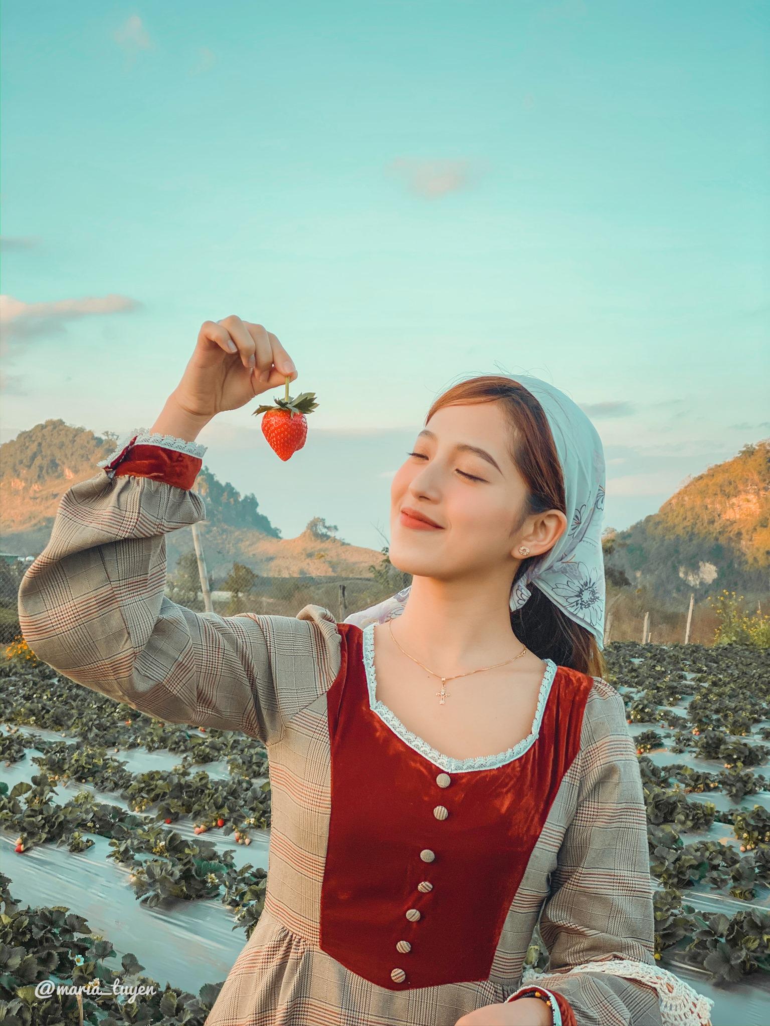 Mộc Châu – Những điểm Check in tuyệt đẹp