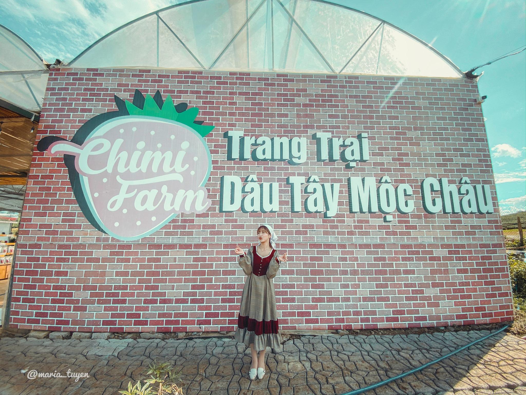 Vườn Dâu Chimi Farm – Đồi Chè Trái Tim
