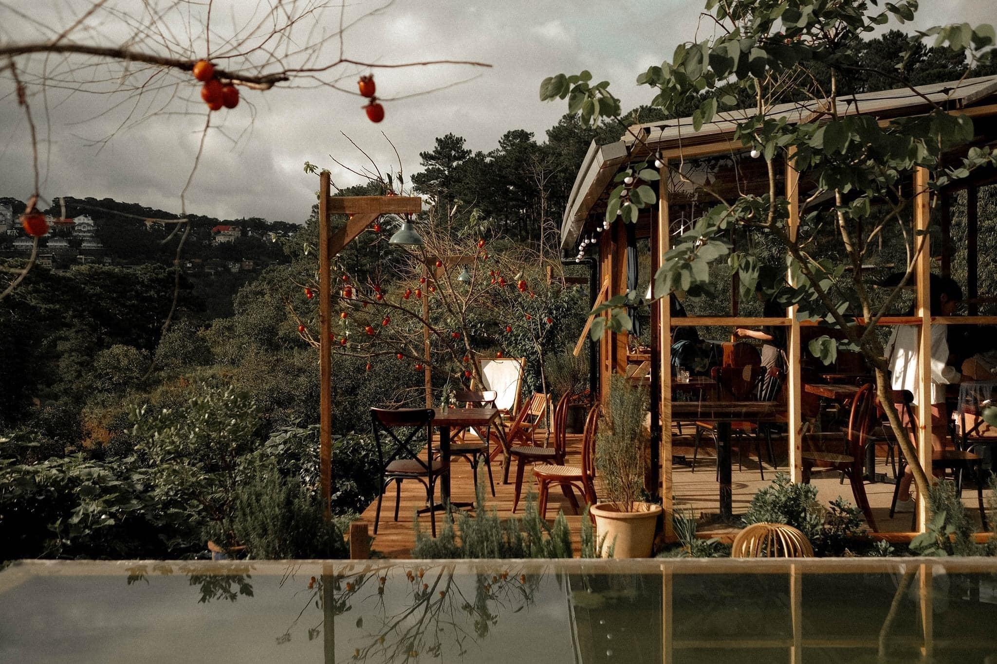 In The Forest Đà Lạt. In The Forest: 86/7 Khe Sanh, Phường 10, Tp. Đà Lạt
