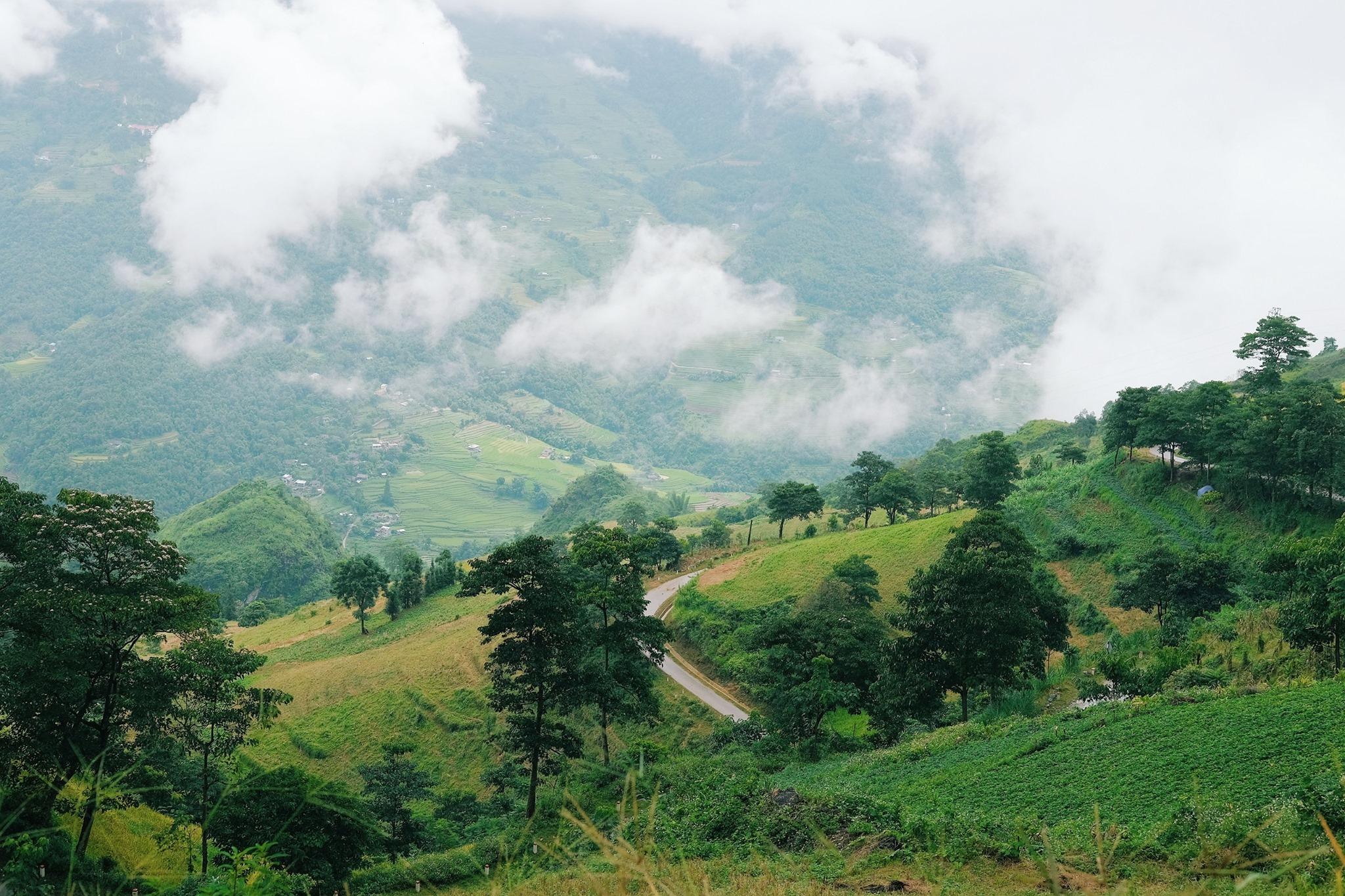 Cảnh tượng tuyệt đẹp: những ngọn đồi xen lẫn lúa và mây